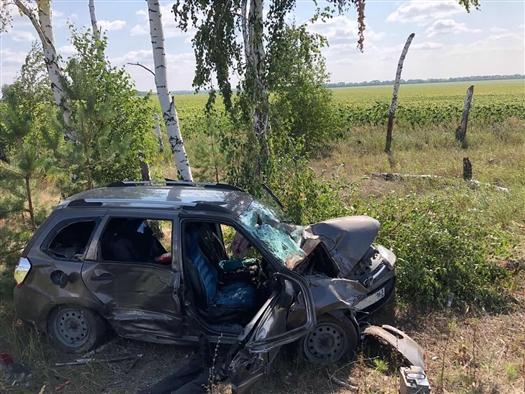 Погиб водитель Lada Kalina, съехавший в кювет в Ставропольском районе
