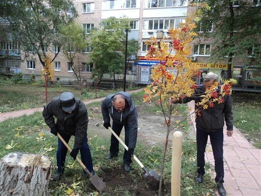 На улице Стара-Загора посадили аллею Победы