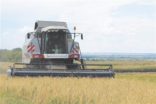 """Хозяйство """"Росинка"""" обрабатывает землю по передовым технологиям"""