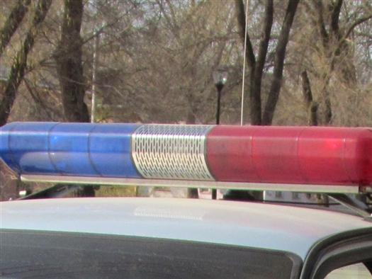 """Член организации """"Офицеры России"""" признался ДПС, что сел за руль после пары бутылок пива"""