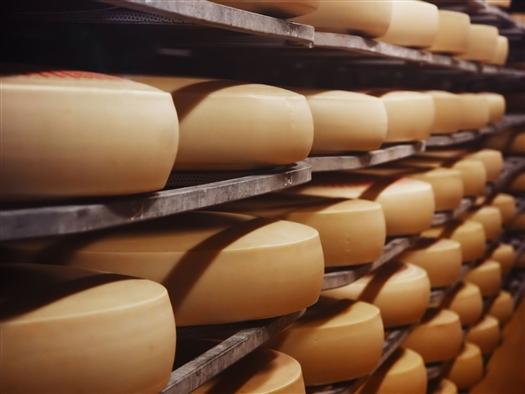 """Самарскую фабрику """"Миралакта"""" обвинили в подделывании сыров"""