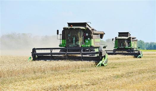 В двух районах области валовый намолот перешел рубеж в 150 тыс. тонн зерна, в шести районах превышена отметка в 100 тыс. тонн