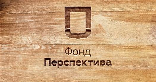 Самарские НКО за год получили 11 млн рублей в качестве президентских грантов