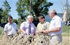 В Приволжье активно восстанавливают поливное земледелие