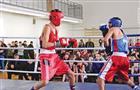 За призы от «Ринга» бились участники турнира в Осинках