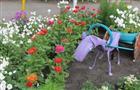 В Сергиевском районе подводят итоги конкурса цветочных клумб