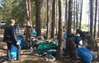"""Сотрудники правительства Пензенской области провели экологическую акцию """"Чистый лес"""""""