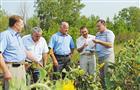 Депутаты губдумы увидели, как справляются с засухой в Кинель-Черкасском районе