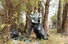 Самарские нефтяники помогли очистить волжские берега