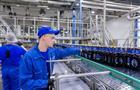 Введение маркировки на пиво спровоцирует закрытие небольших предприятий и снижение поступлений акцизов в бюджет