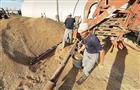 В Самарской области заготовлено 83,4 тыс. тонн яровых семян