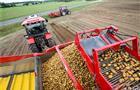 В Чувашии продолжается уборка картофеля и овощей