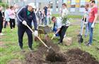 На территории новой школы на 5-й просеке посадили деревья