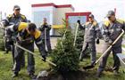 ВКуйбышевском районе Самары нефтепереработчики высадили саженцы голубых елей