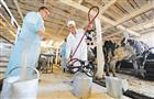 Самарские депутаты готовят пакет предложений по усилению поддержки агропрома