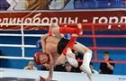 В Тольятти пройдет областной детско-юношеский турнир по ММА