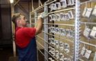 """Нацпроект помог """"Заводу индустриальных покрытий"""" повысить квалификацию персонала и снизить затраты"""
