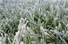 Синоптики предупреждают о возможных ночных заморозках в Самарской области