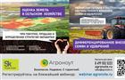 Цифровые технологии не отменяют традиционные научные подходы в растениеводстве