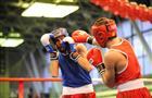 В Самаре стартует XVIII Всероссийский боксерский турнир на призы Василия Шишова