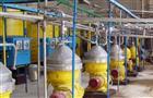 В Безенчукском районе будет построен завод по производству масла, а в Жигулевске - новый цементный завод