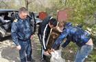 40 килограммов раков, изъятых на придорожной торговой точке, выпустили в реку