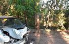 Под Самарой женщина на Daewoo Matiz врезалась в дерево