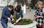 В Самарской области за нарушение правил благоустройства будут штрафовать