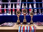 Победители Кубка России по боксу смогут претендовать на отбор к Олимпийским играм
