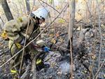У горы Барсук в Самаре загорелся лес