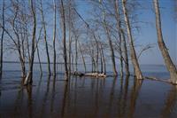 Паводок в Самаре: затоплены пляжи на набережной