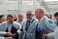 """ОАО """"Тепличный"""" запустил новую теплицу по выращиванию томатов"""