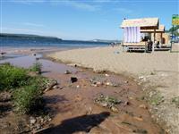 В Волгу в районе Барбошиной поляны попадают химические отходы