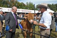 Губернатор открыл работу XVII Поволжской агропромышленной выставки