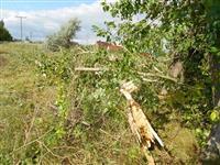 Штормовой ветер повредил 230 домов в шести районах области