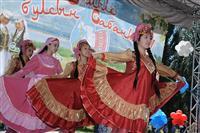 Николай Меркушкин принял участие в областном татарском национальном празднике Сабантуй