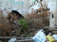 В Самаре стали чаще сгорать заброшенные дома