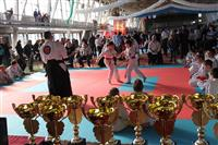 В Самаре прошел юношеский фестиваль единоборств и боевых искусств
