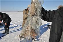 За новогодние праздники в регионе составлено 50 протоколов за нарушение правил рыболовства