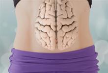 Кишечник и мозг: как микрофлора кишечника влияет на ум и настроение
