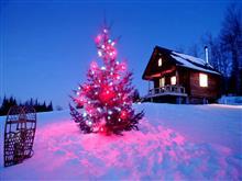 Что предлагают самарские базы отдыха для встречи Нового года
