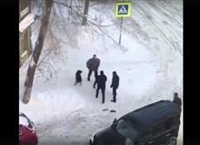 В Самаре неизвестный мужчина посреди улицы стрелял по собакам