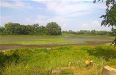 Жители Утевки просят спасти пересыхающее озеро