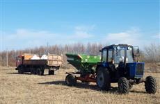 В Порецком районе наращивают темпы посевные работы