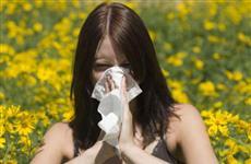 Аллергия на пыльцу растений передается по наследству