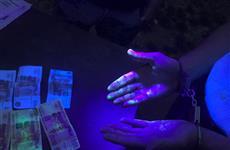 Двух полицейских подозревают в получении более 1 млн руб. за покровительство