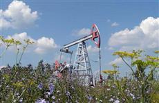 В Самарской области разыграют четыре нефтяных участка на 165 млн рублей
