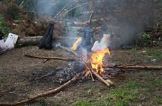 Чем могут быть чреваты пикники с кострами на природе