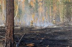 В лесничестве под Самарой 189 человек тушат крупный пожар