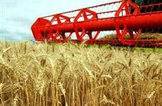 В Аркадакском районе Саратовской области намолочено более 100 000 тонн зерна